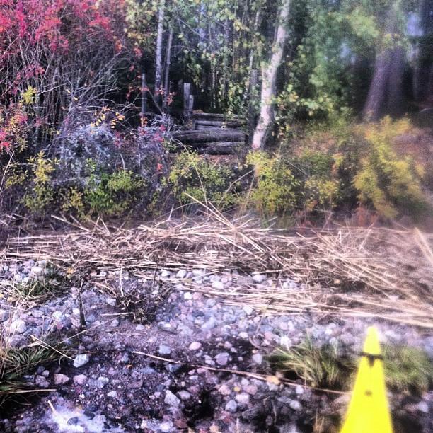 October 16, 2012 at 03:28PM Hittat en potentiell tältplats för någon kortare avstickare.. #alskarattsovaute #kajak #KarlbomsUrochSkurAB by skogsmullen