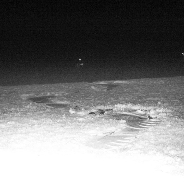 October 25, 2012 at 10:11PM Det blir onekligen nicea spår i snön av #fivefingers #alskarattsovaute by skogsmullen